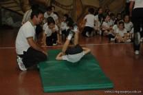Muestra de Educacion Fisica 102