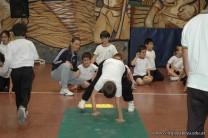 Muestra de Educacion Fisica 263