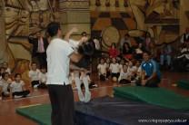 Muestra de Educacion Fisica 319