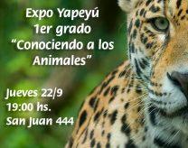 expo-yapeyu-1er-grado