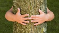 tree-hugger-hugging_fe