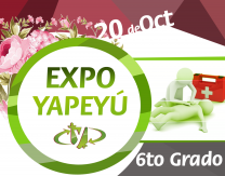 expo-blog - 6to