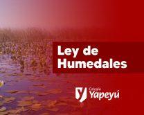 PORT humedales