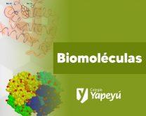 biomole