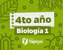 portada VERDE biologia